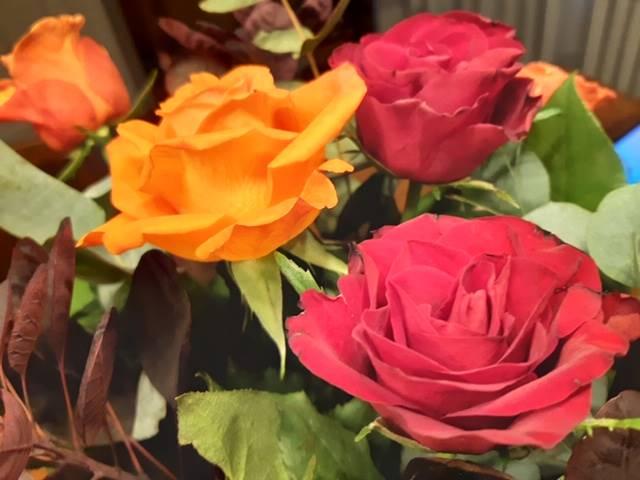 Rinnie's blog – over vriendschap, waardering en je ergens thuis voelen
